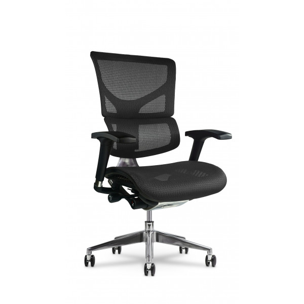 X Chair X3 Executive Management Office Desk Task Chair