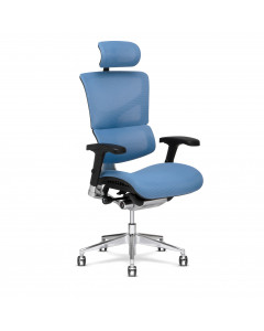 X-Conditioned X3 Executive Chair Box A-56