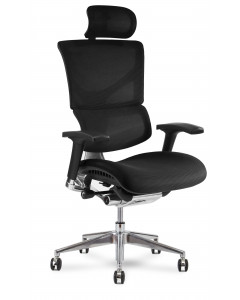 X-Conditioned X3 Executive Chair Box 133