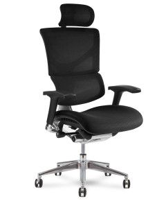 X-Conditioned X3 Executive Chair Box 199