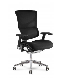 X-Conditioned X3 Management Chair Box 173